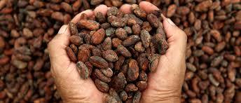 Premier Organics nuts in hand