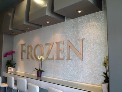 Focal Point Signs and Images Frozen