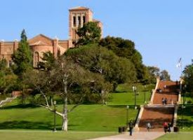 RENTS NEAR UCLA EXCEED $4,300, 80% ABOVE MARKET RATE