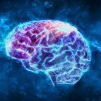 CALIFORNIA TO LAND WORLD'S FIRST BIOTECH PARK FOR BRAIN MAPPING TECHNOLOGY