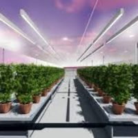 """NEW AGT GREENHOUSE TECHNOLOGY IS """"THE FUTURE OF AGRICULTURE"""""""