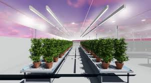 "2 1 - NEW AGT GREENHOUSE TECHNOLOGY IS ""THE FUTURE OF AGRICULTURE"""