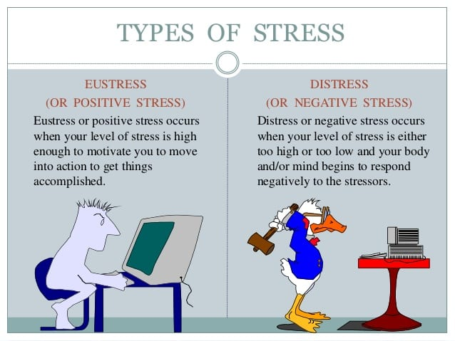 positivestress - The Power of 'Positive Stress'