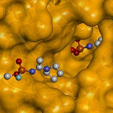 - Virtual View of Molecular Interactions