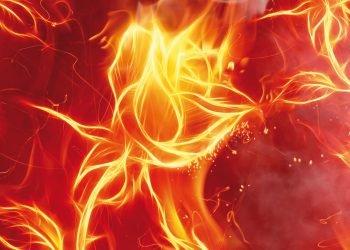 heat-steam