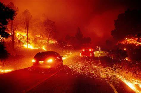 OIP 3 - California Wildfires burned millions of acres. How to build a disaster preparedness plan that saves lives.