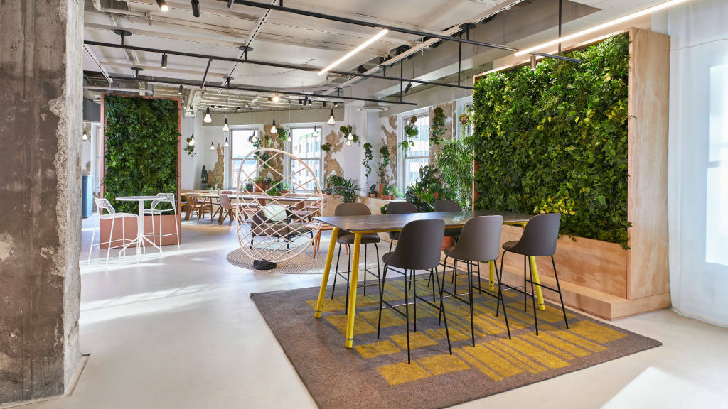 18 0106961 - Biophilic Design: Ways to Weave Nature into the Workplace