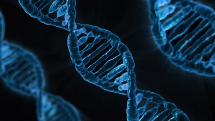 106-Genetics vs Genomics Explained