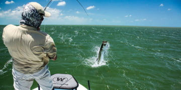 tarpon-fishing