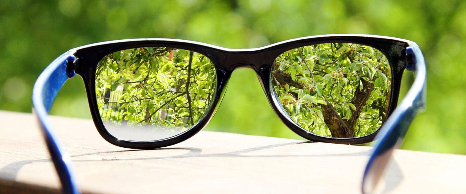 self focus lenses2