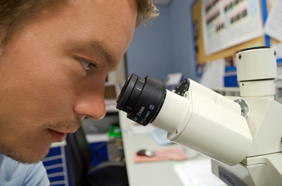 dna biology science through microscope