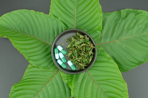Top 10 Best Things to Do After Taking Kratom